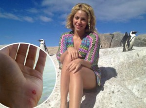 Shakira Attacked by Sea Lion!