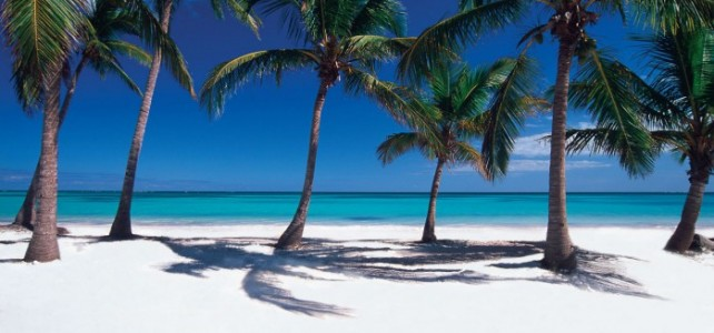 5 Reasons You Should Visit The Dominican Republic