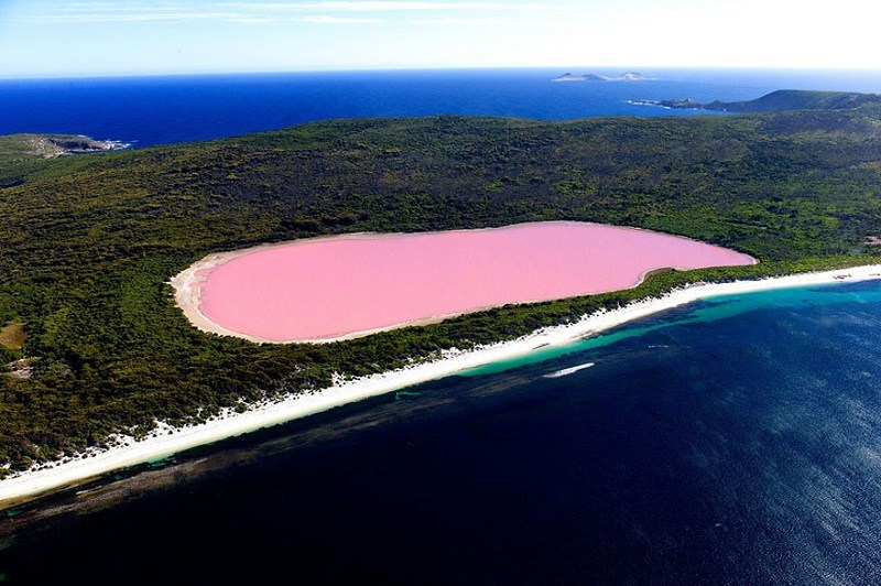 The Captivating Pink Lake Is Not A Trick Of Light And It Retains Its Hue When Removed Origin Bubble Pinkish Aesthetics Remains Mystery